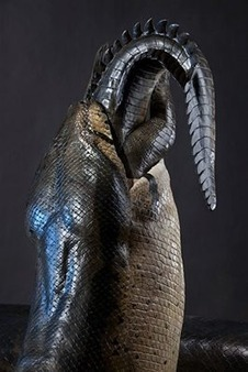 Finding a 42-foot-long snake (fossil) - Boing Boing   Antiques & Vintage Collectibles   Scoop.it