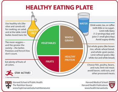 The Nutrition Source | 7 de abril: Día Mundial de la Salud. World Health Day | Scoop.it