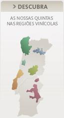 Home / Globalwines | Wired Wines of Alentejo | Scoop.it