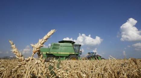 Voici comment le changement climatique va aussi modifier notre alimentation | Un peu de tout et de rien ... | Scoop.it