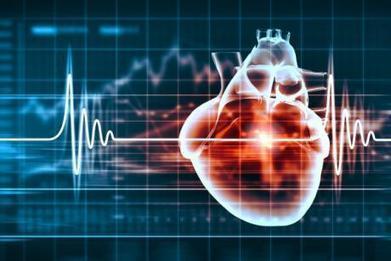 La journée mondiale du cœur met la prévention à l'honneur   Patrick Fornas   Scoop.it