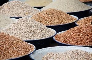 Agriculture : Vandana Shiva appelle les Français à désobéir | Nourrir la planète... autrement | Scoop.it