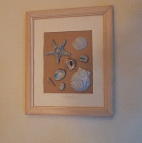 Seashell Mounted Display Framed Starfish painted blue Scallops and | Fish: 21st Century Design Essentials | Scoop.it