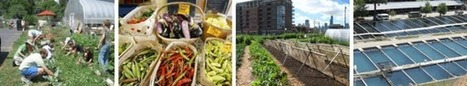 Home - Farm to Table | Sustainable Urban Agriculture | Scoop.it