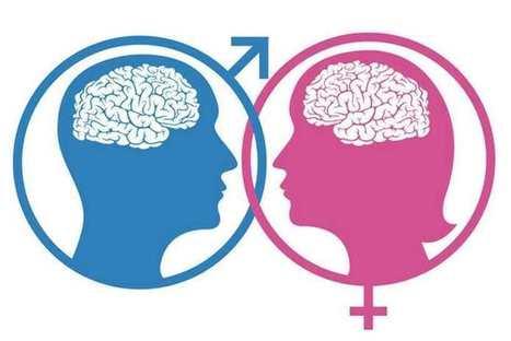 Deux scientifiques parviennent à « changer le sexe » d'un cerveau - SciencePost   ETUDES : Consumer insights   Scoop.it