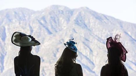 Christine A. Moore tops off Breeders' Cup with a millinery collection | Horse Racing News | Scoop.it