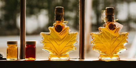 Is a maple syrup a healthy sweetener? - I Quit Sugar | Nutrition Today | Scoop.it