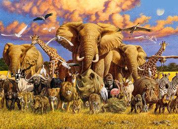 El Calentamiento Global podría acabar con la flora y la fauna de la Tierra | CalentamientoGlobal | Scoop.it