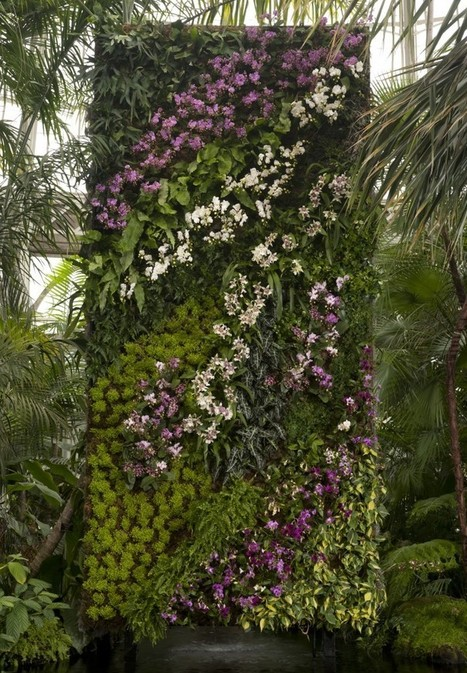 Imagining the Green Wall | NYBG | Vertical Farm - Food Factory | Scoop.it
