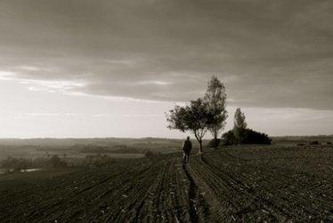 Comment (vraiment) sauver l'agriculture française avec 3 milliards | Questions de développement ... | Scoop.it