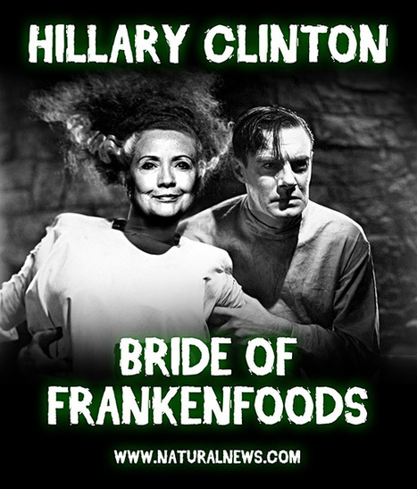Bride of Frankenfood: Hillary Clinton pushes GMO agenda... hires Monsanto lobbyist... takes huge dollars from Monsanto | Discover Sigalon Valley - Where the Tags are the Topics | Scoop.it
