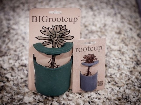 Faveoly Crowdfunding Project of the Day: BIGrootcup | Living | Scoop.it