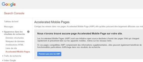 Google Search Console introduit le rapport d'erreurs des pages AMP | Veille : Référencement Naturel SEO | Scoop.it