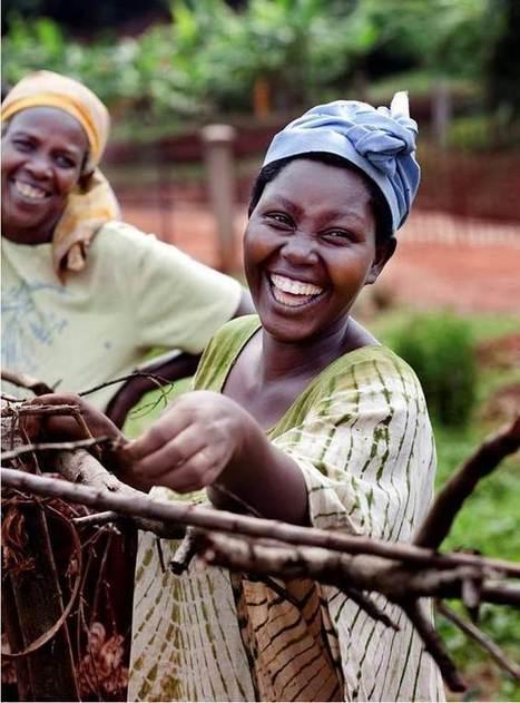 Qui sont les « solar sisters » et comment peuvent-elles aider les communautés forestières ? | Afrique: développement durable et environnement | Scoop.it