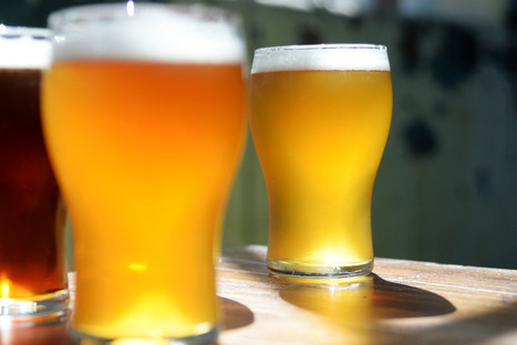 Craft beer boom continues to brew, sales up 20% | Villaggio Chronicle | Scoop.it