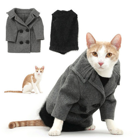 BEST THING EVER: You Can Actually Buy United Bamboo's Cat Clothes | Epicurean Adventures | Scoop.it