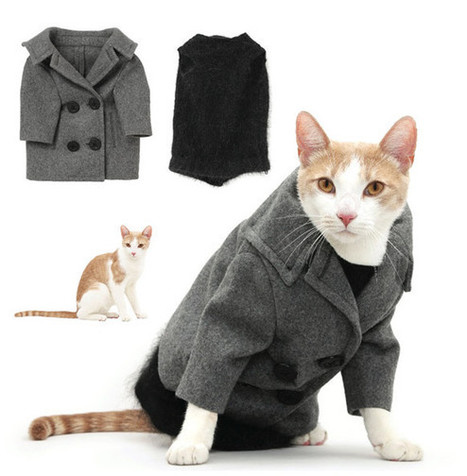 BEST THING EVER: You Can Actually Buy United Bamboo's Cat Clothes | Eco-fashion | Scoop.it