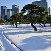Japon: un produit mortel fuit d'une usine, mais est absorbé par la neige | Je, tu, il... nous ! | Scoop.it