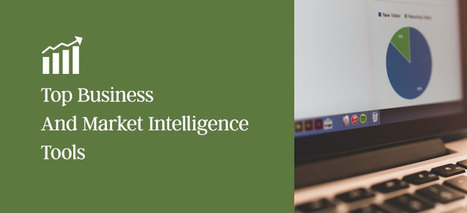 Top Business And Market Intelligence Websites - Startup World | Strategy and Competitive Intelligence by Bonnie Hohhof | Scoop.it