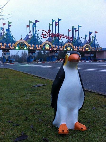 La cavale loufoque du pingouin de Céret | Mais n'importe quoi ! | Scoop.it