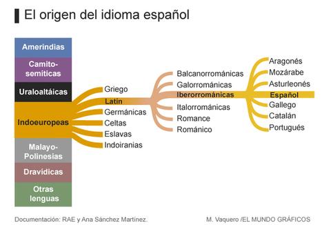 El mapa genético del diccionario | Todoele - ELE en los medios de comunicación | Scoop.it