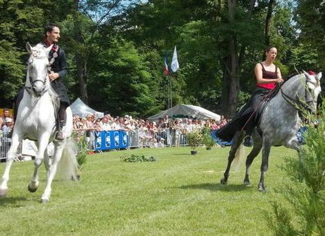 Salon du cheval for Salon du cheval albi