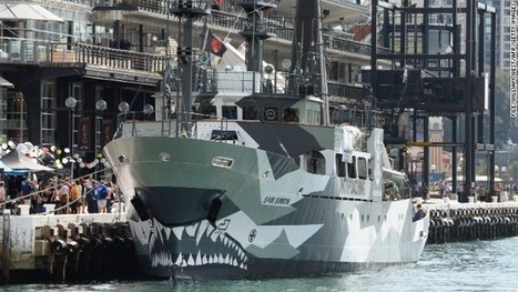 Sea Shepherd activists say they disrupted Japan's whale hunt in Antarctic waters | EARTHCOVE - a place for peaceful interplanetary & interspecies relations | Scoop.it