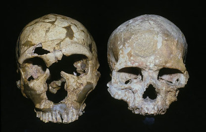 Ancient Neanderthals Organized Their Homes Like Modern Humans - Science World Report | Ancient Origins of Science | Scoop.it