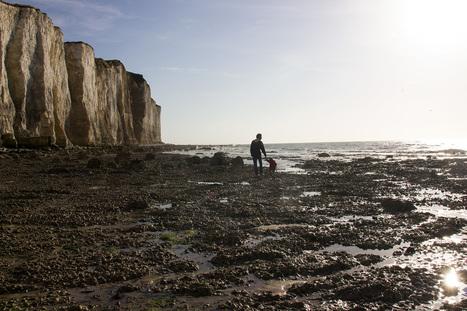 Mit Wohnmobil und Kind um die Welt: Wir reisen durch die Normandie - Lunamag.de   Frankreich Tourismus   Scoop.it
