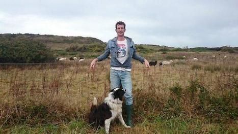 Entreprendre dans les îles : à Hoëdic, il monte un élevage de moutons | L'environnement en Bretagne | Scoop.it