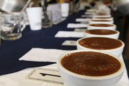 Burundi drastically improves performance in ACE cupping   Coffee News   Scoop.it