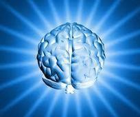 Empowered Labs - Best Nootropics Supplements: Top Supplements to improve memory | Nootropic | Scoop.it