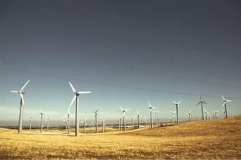Fundación Sustentator//   Revolución sustentable   Scoop.it