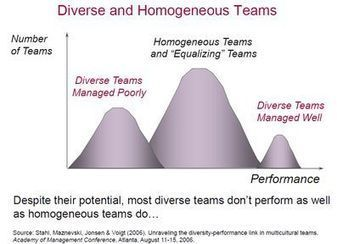 What performs best? A diverse or an homogeneous Team? | Management | Scoop.it