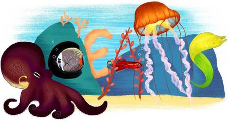 Here's why landlubbers should care about the ocean   Sustain Our Earth   Scoop.it
