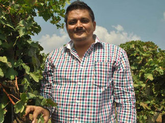 Indians prefer red wine, says Sumedh Mandla of Grover Zampa Vineyards - Firstpost | Quirky wine & spirit articles from VINGLISH | Scoop.it