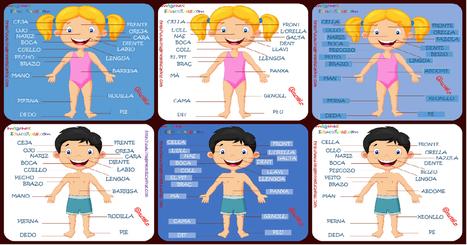 Super Poster con las Partes del Cuerpo. Tres idiomas Castellano, Catalán y Galego - Imagenes Educativas | Recull diari | Scoop.it