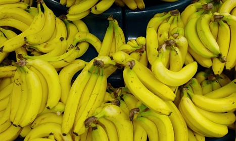 Banana price war requires government intervention, says Fairtrade Foundation | Global problems | Scoop.it