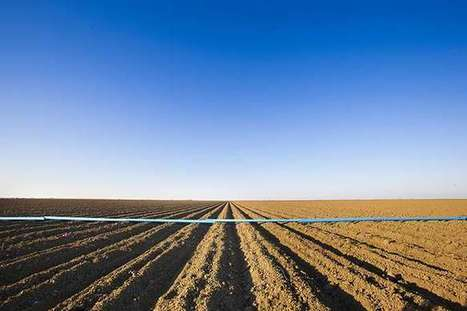 Drought tips available for farmers   Sustain Our Earth   Scoop.it