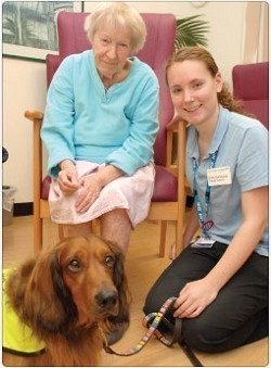 Canine compassion helping patients on Nell Gwynne ward | Empathy and Animals | Scoop.it