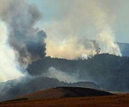 Study helps managers identify regions with multiple threat potential, including wildfires | Sustain Our Earth | Scoop.it