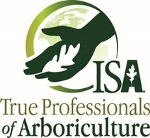 ISA Names Eight Arborists 2016 True Professionals of Arboriculture™ | Tree News | Scoop.it