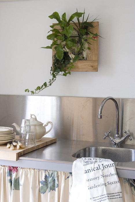 Academy Florists Blog » Living Frame | Balcony Gardening | Scoop.it