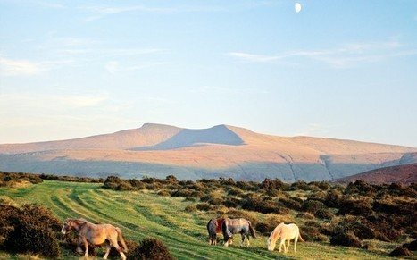 Stargazers to flock to Brecon Beacons after area is granted 'dark sky status'  - Telegraph | CLOVER ENTERPRISES ''THE ENTERTAINMENT OF CHOICE'' | Scoop.it