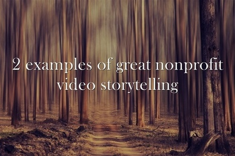 2 Examples of Great Nonprofit Video Storytelling | Community Development | Scoop.it
