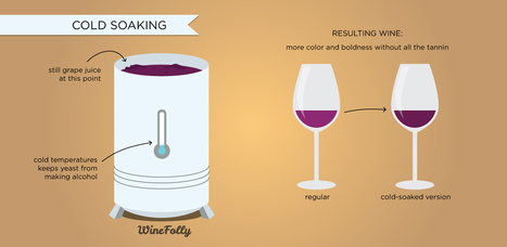 6 Wine Making Processes & How They Affect Wine | Fine Wines | Scoop.it