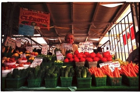 Your official Apt613 guide to Ottawa's farmers' markets | Apartment613 | Food and Beer Ottawa | Scoop.it