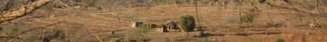African soil suffers dramatic nutrient deficit - Farming Africa   FarmingAfrica.net   Scoop.it