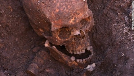 Richard III's bones reveal king's taste for luxury food and wine | Vitabella Wine Daily Gossip | Scoop.it