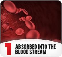 PENIS ENLARGEMENT India Medicine You Can Trust | Sex Timing Liquid | Scoop.it